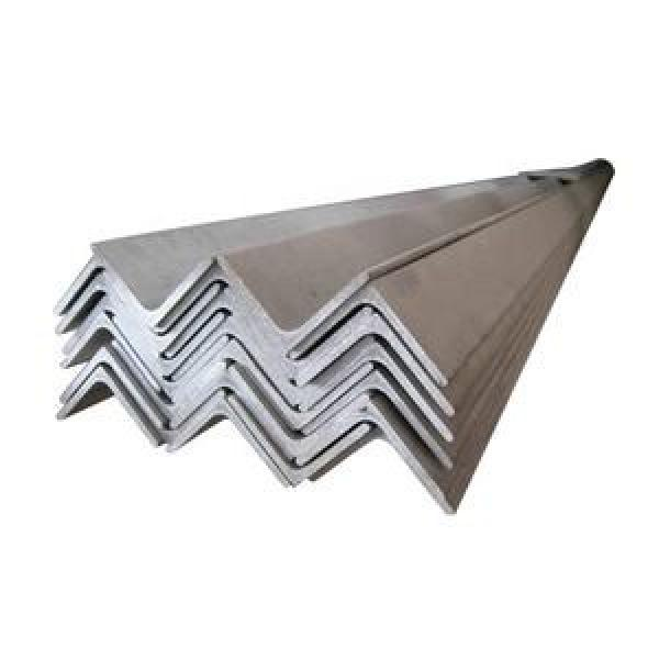304 316L Steel Profile Stainless Steel Angle #1 image